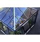 JULIANA Gewächshaus »Oase«, B x L x H: 296  x 296  x 279  cm, Aluminium-Thumbnail