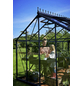 JULIANA Gewächshaus »Orangerie«, 15,2 m², Aluminium-Thumbnail