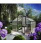 KGT Gewächshaus »Orchidee«, B x L x H: 297  x 429  x 233  cm-Thumbnail