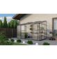 VITAVIA Gewächshaus »Osiris«, 6,5 m², Kunststoff/Aluminium, winterfest-Thumbnail