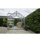 HALLS Gewächshaus »Popular«, 4,96 m², Aluminium/Glas, winterfest-Thumbnail