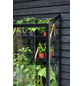 Gewächshaus »Popular«, B x L x H: 193  x 195  x 195  cm, Aluminium/Glas-Thumbnail