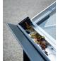 JULIANA Gewächshaus »Premium«, B x L x H: 296  x 296  x 267  cm, Aluminium-Thumbnail