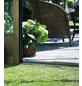 JULIANA Gewächshaus »Premium«, B x L x H: 296  x 296  x 267  cm, Aluminium/Polycarbonat (PC)-Thumbnail