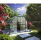 KGT Gewächshaus »Rhodo«, 5,16 m², Kunststoff/Aluminium, winterfest-Thumbnail