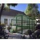 KGT Gewächshaus »Rose«, B x L x H: 233  x 323  x 215  cm, Aluminium/Polycarbonat (PC)-Thumbnail