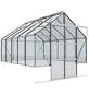 VITAVIA Gewächshaus Set »Cassandra«, 8,3 m² Grundfl., Wandverglasung  Einscheiben-Sicherheitsglas-Thumbnail