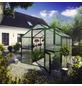 KGT Gewächshaus »Tulpe«, 12,75 m², Kunststoff/Aluminium, winterfest-Thumbnail