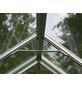 VITAVIA Gewächshaus »Uranus«, B x L x H: 257  x 258  x 247,9  cm, Aluminium/Glas-Thumbnail