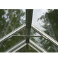 VITAVIA Gewächshaus »Uranus«, BxLxH: 257 x 445 x 247,9 cm-Thumbnail