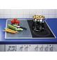 WENKO Glasabdeckplatte, BxHxT: 3 x 5,5 x 52 cm, Glas/Kunststoff-Thumbnail