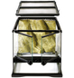 EXO TERRA Glasterrarium, 30 x 30 x 30 cm, inklusive Rückwand-Thumbnail