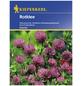 KIEPENKERL Gründüngung pratense Trifolium »Rotklee«-Thumbnail