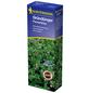 KIEPENKERL Gründüngung resupinatum L. Trifolium »Perserklee«-Thumbnail