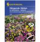 KIEPENKERL Hängende Gärten Saatband, Samen, Blüte: mehrfarbig-Thumbnail