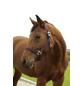 Covalliero Halfter »Hippo«, passend für Pony, Gr. 1, marine-Thumbnail
