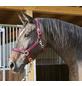 Covalliero Halfter »Mustang«, passend für , Gr. 1, rot/schwarz-Thumbnail
