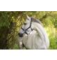 Covalliero Halfter »Mustang«, passend für , Gr. 1, royalblau/schwarz-Thumbnail
