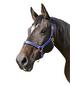 Covalliero Halfter »Mustang«, passend für , Gr. 2, royalblau/schwarz-Thumbnail