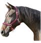 Covalliero Halfter »Mustang«, passend für , Gr. 3, rot/schwarz-Thumbnail