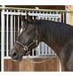 Covalliero Halfter »Mustang«, passend für , Gr. 3, schwarz/silberfarben-Thumbnail