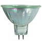 CASAYA Halogen-Leuchtmittel, 50 W, GU5.3, warmweiß-Thumbnail