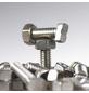KGT Hammerkopfschraube für Gewächshäuser, BxLxH: 1 x 3 x 2 cm, Metall-Thumbnail