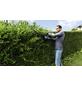 BOSCH HOME & GARDEN Heckenschere »AHS«, Schwertlänge: 55 cm-Thumbnail