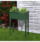 FLORAWORLD Hochbeet »Season«, BxHxL: 60 x 80 x 30 cm, Stahl-Thumbnail