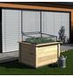 KGT Hochbeet »Woody 130«, BxHxL: 131 x 79 x 99 cm-Thumbnail