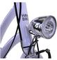 HAWK Hollandrad »Classic Joy«, 28 Zoll, Unisex-Thumbnail