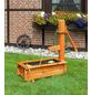 PROMADINO Holztrog, BxHxT: 110 x 100 x cm, honig-Thumbnail