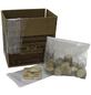 Home Pilzzuchtset Bio Austernpilz, Nutzung im Haus-Thumbnail