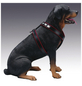 Hunde-Geschirr »Modern Art«, Größe: 75-85  cm, Rindsleder, schwarz-Thumbnail