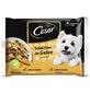 CESAR Hunde-Nassfutter »Cesar«, 13 Packungen-Thumbnail