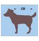 Hundebekleidung, Größe: Gr. 40  cm, Polyacryl, grau-Thumbnail