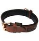 Hundehalsband, Größe: 55  cm, Rindsleder, cognacfarben-Thumbnail