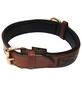 Hundehalsband, Größe: 70  cm, Rindsleder, cognacfarben-Thumbnail