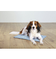 TRIXIE Hundekühlmatte, hellblau-Thumbnail