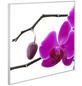 EL FUEGO Infrarotheizung »AY6902 - Blüte | Knospe«-Thumbnail