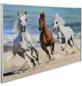 Papermoon Infrarotheizung »EcoHeat - Pferde«, Matt-Thumbnail
