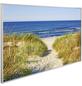 Papermoon Infrarotheizung »EcoHeat - Strand«, Matt-Thumbnail