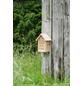 WINDHAGER Insektenhotel zur Post-Thumbnail