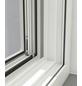 WINDHAGER Insektenschutz-Fenster, BxL: 100 x 120 cm, In Breite und Höhe kürzbar-Thumbnail