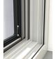 WINDHAGER Insektenschutz-Fenster, BxL: 140 x 150 cm, In Breite und Höhe kürzbar-Thumbnail