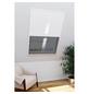 WINDHAGER Insektenschutz-Fenster »EXPERT«, 110 x 160 cm-Thumbnail