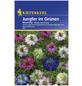 KIEPENKERL Jungfer im Grünen, Nigella damascena, Samen, Blüte: mehrfarbig-Thumbnail