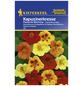 KIEPENKERL Kapuzinerkresse, Tropaeolum majus, Samen, Blüte: mehrfarbig-Thumbnail