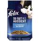 FELIX Katzen-Nassfutter, 85 g-Thumbnail