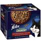 FELIX Katzen-Nassfutter »Felix Sensations Crunchy«, Felix Sensations Crunchy-Thumbnail